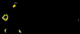 szkolenie rodo dla pracownikow logo Primo Agnieszka Kant